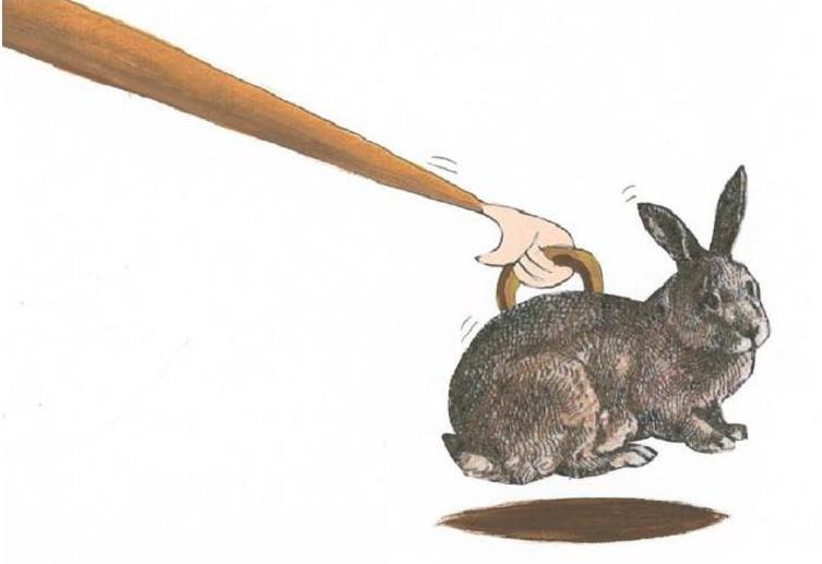 """Résultat de recherche d'images pour """"poser un lapin"""""""