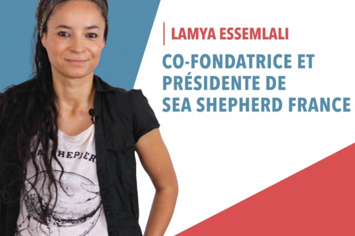 Les Française FrenchiesLe Média Petits La Inspirant À shtrQd